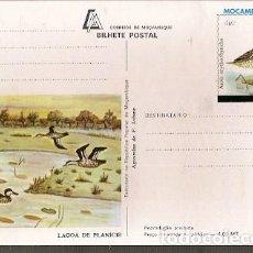Postales: MOZAMBIQUE ** & INTERO, AGUARELA POR F. JOFANE, MARRECO, ANAS ERYTHRORHYNCHA (1129). Lote 141327778