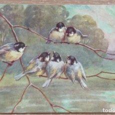 Postales: POSTAL DE 1909. Lote 143211894