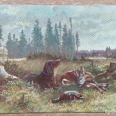 Postales: POSTAL DE 1906. Lote 143305942
