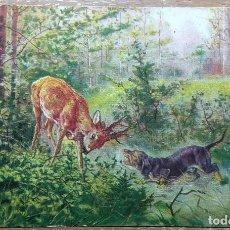 Postales: POSTAL DE 1902. Lote 143545534