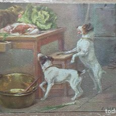 Postales: POSTAL DE 1909. Lote 143567462