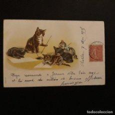 Postales: GATOS ESCRIBIENDO POSTAL CROMOLITOGRAFICA 1905. Lote 146161398