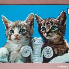 Postales: POSTAL GATOS. ANIMALES DOMÉSTICOS Nº28 SERIE 6ª. ESCUDO DE ORO. FISA. 1968. NO CIRCULADA.. Lote 146675514