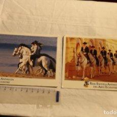 Postales: 2 POSTALES REAL ESCUELA ANDALUZA DEL ARTE ECUESTRE Nº 892 Y 893 SIN CIRCULAR-CABALLOS. Lote 147065022