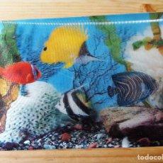 Postales: TARJETA POSTAL 3D ACUARIO PECES . Lote 150913354