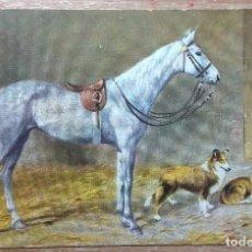 Postales: POSTAL DE 1909. Lote 151199686