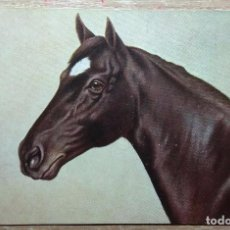 Postales: POSTAL DE 1912. Lote 151200122