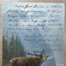 Postales: POSTAL DE 1903. Lote 151200762