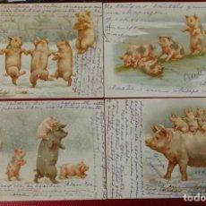 Postales: LOTE DE 4 POSTALES DE CERDOS. REVERSO SIN DIVIDIR. CIRCULADAS. SELLO DESPRENDIDO.. Lote 151379770