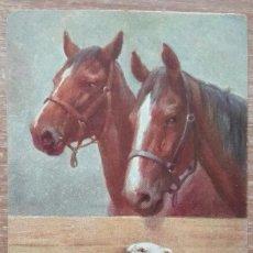 Postales: POSTAL DE 1906. Lote 151510502