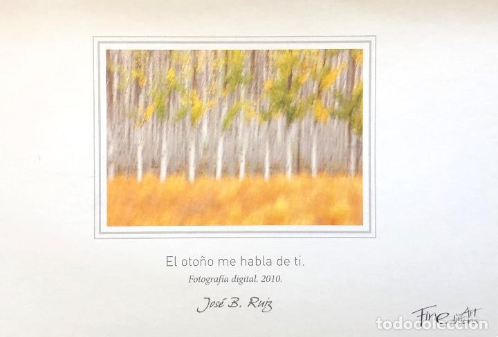 Postales: COLECCIÓN DE 8 POSTALES DE NATURALEZA. FOTOGRAFÍA. AUTOR: JOSE B. RUIZ. - Foto 3 - 152901380