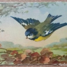 Postales: POSTAL DE 1909. Lote 153972122