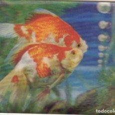 Postales: POSTAL EN TRES DIMENSIONES PECES DE COLORES CARPAS . Lote 154925950
