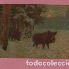 Postales: POSTAL DE UNA PAREJA DE JABALI - ALEMANIA - LEIPZING A.S.M.422. Lote 155446042