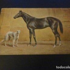 Postales: CABALLO Y PERRO POSTAL. Lote 155630150