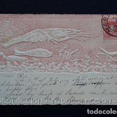 Postales: POSTAL MAR ANIMALES MARINOS FAUNA NATURALEZA . M. M. VIENNE CA AÑO 1900 .. Lote 156634770