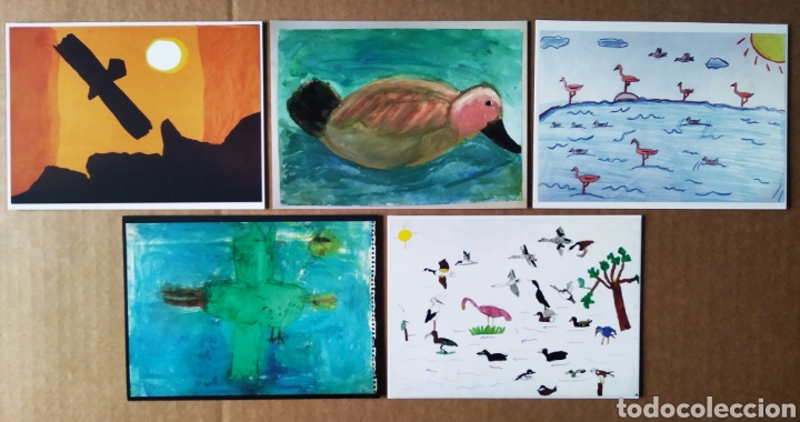 Postales: Primer Concurso de Pintura de Aves de Andalucía / Día Mundial de las Aves 2004. 18 postales - Foto 3 - 157911917