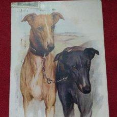 Postales: BONITA CARTA POSTAL PERROS RAZA GALGOS GREYHOUNDS A. VIVIAN MANSELL & CO LONDON FECHADA EN 1943. Lote 160103106