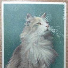 Postales: POSTAL DE 1911. Lote 161857514