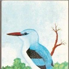 Postales: MOZAMBIQUE ** & AVES DE MOZAMBIQUE, GUARDA-RIOS, HALCYON SENEGALENSIS, MAPUTO 1987 (1864). Lote 164002090