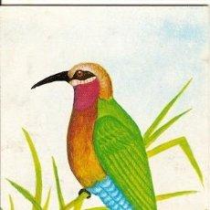 Postales: MOZAMBIQUE ** & ENTERO, AVES DE MOZAMBIQUE,ABELHARUCO, MEROPS BULLOCKOIDES, MAPUTO 1987 (7771). Lote 165952322