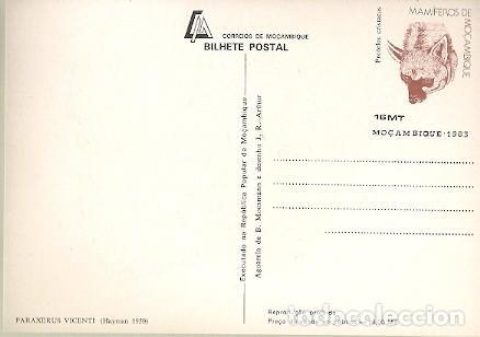 Postales: Mozambique ** & Intero, Los Mamíferos de Mozambique, Ardilla, Paraxerus Vincenti, Hayman (1950) - Foto 2 - 166685190