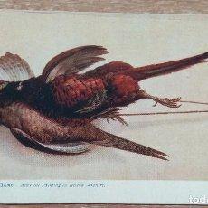 Postales: POSTAL DE 1909. Lote 167882800