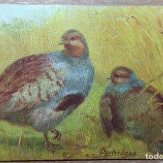 Postales: POSTAL DE 1920. Lote 168528456