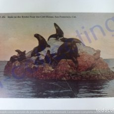 Postales: POSTAL ANTIGUA. SEALS ON THE ROCKS NEAR THE CLIFF HOUSE. CIRCULADA EN 1915.. Lote 168811152