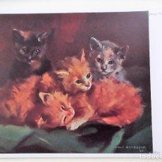 Cartes Postales: CUADRO: GATOS DE MAX RIMBOECK. NUEVA. COLOR. Lote 171659504