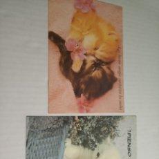 Postales: GATOS POSTAL. Lote 171716432