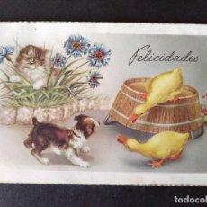 Postales: PATOS PERRO Y GATO POSTAL. Lote 171769762