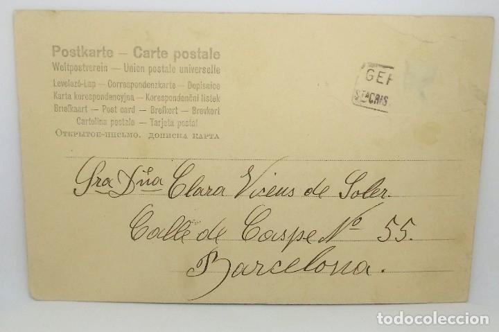Postales: 1904 Ciervo - Foto 3 - 175961795