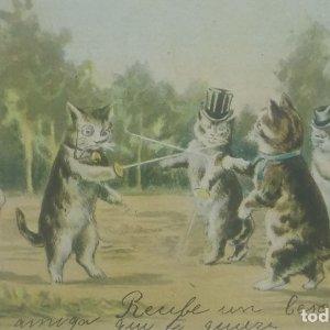 Gatos. Esgrima. Postal antigua