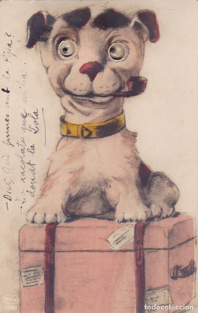 PERRO CON OJO AÑADIDOS A LA POSTAL CIRCULADA AÑOS 1920 (Postales - Postales Temáticas - Animales)