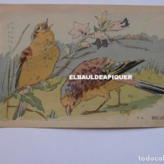 Postales: DIBUJOS DE PAJAROS. U.A. BRUANTS. Lote 177959545