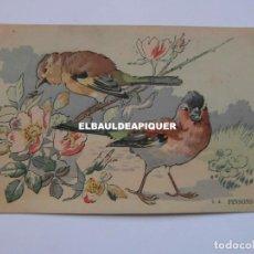 Postales: DIBUJOS DE PAJAROS. U.A. PINSONS. Lote 177959772