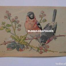 Postales: DIBUJOS DE PAJAROS. U.A. BOUVREUILS. Lote 177959914