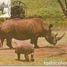 Postales: MOZAMBIQUE & P.MAXIMO, FAUNA, RHINO, RHINOCERONTIDAE 1980 (3558). Lote 178337812