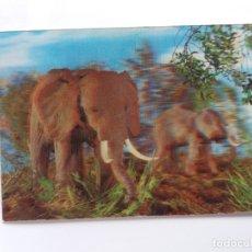 Postales: TARJETA POSTAL - STEREO 3D ESTEREOSCÓPICAS - ED. ESCUDO DE ORO R-327 - ANIMALES - ELEFANTES. Lote 178860540