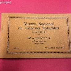 Postales: MUSEO NACIONAL DE CIENCIAS NATURALES, MAMIFEROS Y DIPLODOCUS, 13 POSTALES SIN CIRCULAR MADRID BLOC. Lote 179528537
