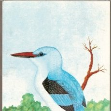 Postales: MOZAMBIQUE ** & I.P AVES DE MOZAMBIQUE, KINGFISHERS, HALCYON SENEGALENSIS, MAPUTO 1987 (1864). Lote 181948397