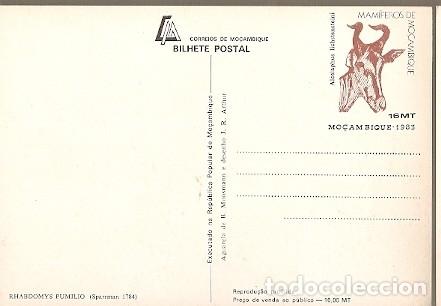 Postales: Mozambique & I.P Mamiferos de Moçambique, Rhabdomys Pumilio, Sparrman, Maputo 1983 (1784) - Foto 2 - 181960608