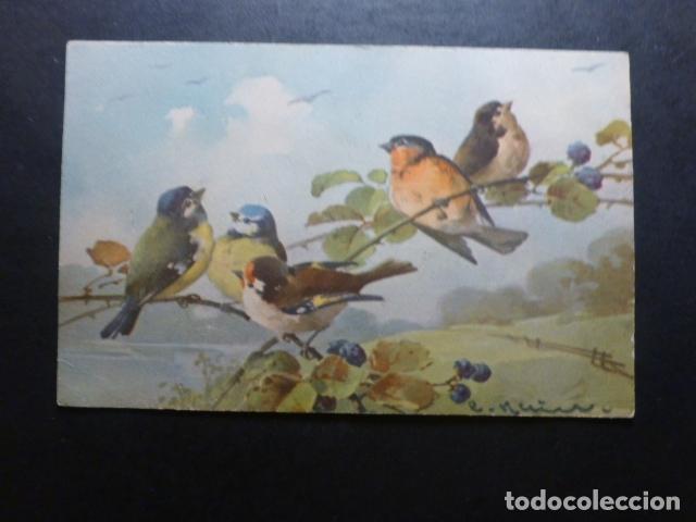 PAJAROS POSTAL PUBLICITARIA LA TRINIDAD ADOLFO CAMACHO JEREZ DE LA FRONTERA CADIZ (Postales - Postales Temáticas - Animales)