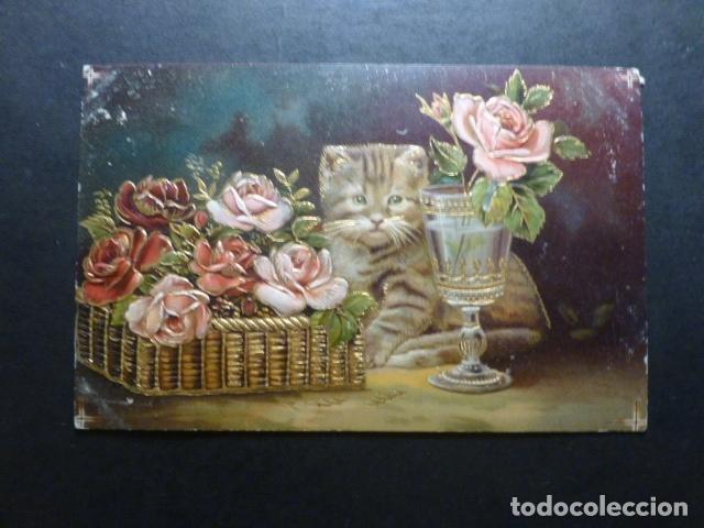 GATO CON FLORES Y COPA POSTAL (Postales - Postales Temáticas - Animales)