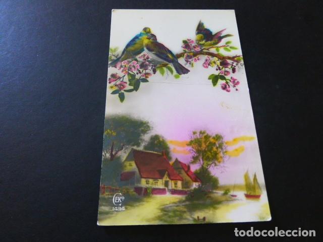 GORRIONES Y PAISAJE POSTAL (Postales - Postales Temáticas - Animales)