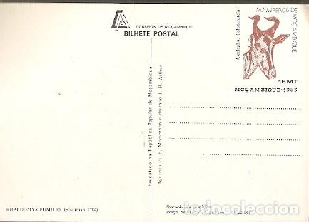 Postales: Mozambique ** & I.P Mamíferos de Mozambique, Rhabdomys Pumilio 1983 (1784) - Foto 2 - 183612871