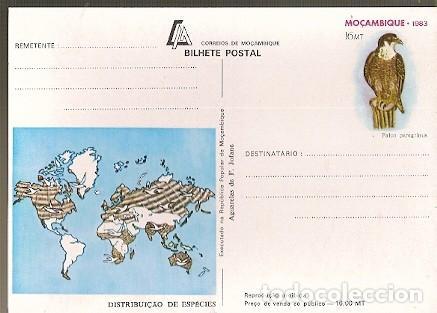 MOZAMBIQUE ** & I.P ACUARELA DE F. JOFANE, FALCON, FALCO PEREGRINUS 1983 (7994) (Postales - Postales Temáticas - Animales)