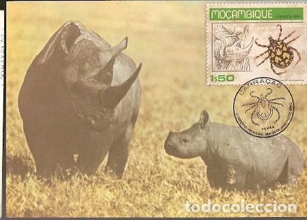 MOZAMBIQUE & MAXIMO, INSECTOS, GARRAPATAS, XODIDAE, PEMBA 1980 (6878) (Postales - Postales Temáticas - Animales)