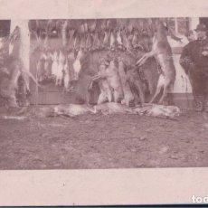Postales: POSTAL CACERIA DE VENADOS - RECUENTO DE ANIMALES Y CAZADORES. Lote 184605475